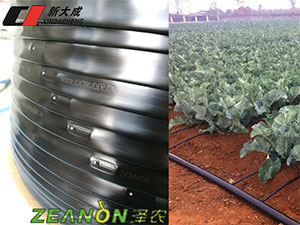 Flat drip irrigation tape form xindacheng
